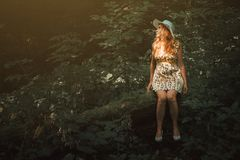 Woman with blonde hair sitting on a tree in the forest. Beautifu Royalty Free Stock Photography
