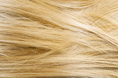 Woman blonde hair texture Royalty Free Stock Photography