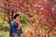 Woman in blooming garden Stock Photography