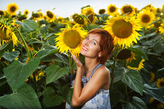 Woman on blooming sunflower field Royalty Free Stock Photo