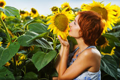 Woman on blooming sunflower field Royalty Free Stock Images
