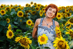 Woman on blooming sunflower field Stock Photos