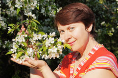 Woman and blossoming apple tree Stock Image