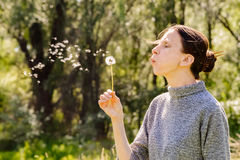 Woman and Blowball Dandelion Royalty Free Stock Photography