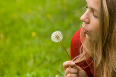 Woman blowball. Woman dandelion blowing blowball flower Royalty Free Stock Photos