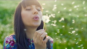Woman Blowing on a Dandelion at sunset. Woman blowing dandelion seeds at sunset stock video