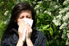 Woman blowing nose royalty free stock image