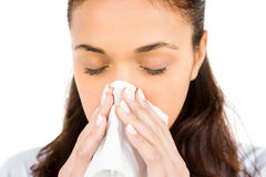 Woman blowing nose with tissue paper. Against white background Royalty Free Stock Images
