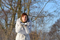 Woman blowing in the snow Stock Image