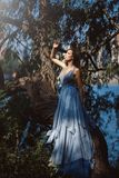 Woman in blue dress in fairy forest. royalty free stock image