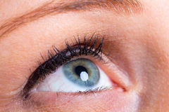 Woman blue eye Stock Photography