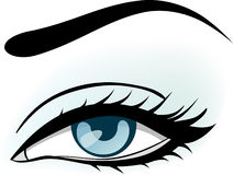 Woman blue eye illustration Royalty Free Stock Image