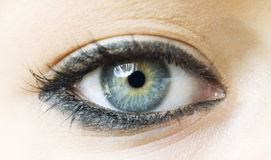 Woman blue eye with makeup Royalty Free Stock Photos
