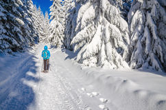 Woman in blue jacket on winter hiking trail Stock Photography