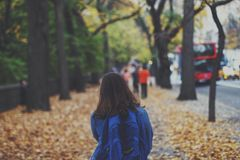 Woman With Blue Jansport Backpack Near Green Trees during Daytime Stock Images