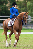 A woman from the Blue Star riding sidesaddle Stock Images