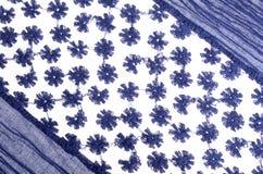 Woman blue stylish scarf royalty free stock image