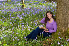 Woman in bluebells forest Stock Image
