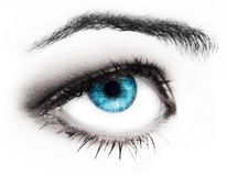 Woman blues eye Royalty Free Stock Photography