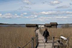Woman on the boardwalk. Woman walking along a bridge, at lake Krankesjon, in Southern Sweden stock photos