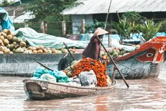 Woman in a boat selling fruits in Vietnam stock photos