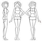 Woman body Stock Photos