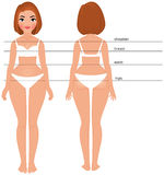 Woman body full length front and back. Stock vector cartoon illustration woman in Full length front and back for measurement of parameters body Royalty Free Stock Photography