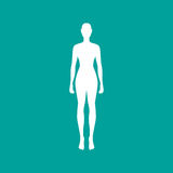 Woman body outline in white. Vector illustration Royalty Free Stock Image