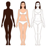 Woman Body Shape and Silhouette Template. Woman body shape, outline and silhouette template. Full length front view of a standing girl isolated on white Royalty Free Stock Image