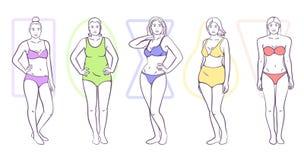 Woman body shape vector illustration