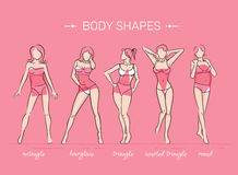 Woman body shapes. What is your body shape. Vector illustration of girls' figures. Women in bathing suits Stock Images