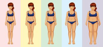 A Woman Body Transformation. Illustration stock illustration