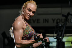 Woman Bodybuilder Doing Exercise For Biceps Stock Images