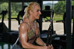 Woman Bodybuilder Doing Exercise For Triceps Stock Photo