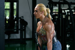 Woman Bodybuilder Doing Exercise For Triceps Stock Image