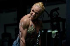 Woman Bodybuilder Exercising Triceps Stock Image
