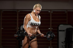 Woman Bodybuilder Performing Biceps Curls With A Barbell. Young Woman Athlete Doing Heavy Weight Exercise For Biceps Stock Image