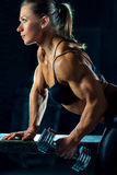 Woman bodybuilder Stock Photos