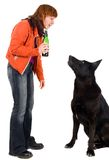 Woman with bottle of beer and dog Stock Photo