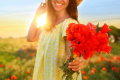 Woman with bouquet of poppies in field on sunny day royalty free stock photography
