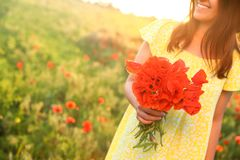 Woman with bouquet of poppies in field on sunny day. Space for text stock photos