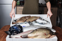 Woman with a box of fish in her kitchen Royalty Free Stock Photography