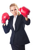 Woman boxer isolated Stock Image