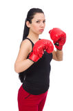 The woman boxer isolated on the white Royalty Free Stock Photos