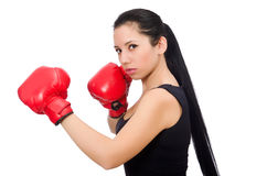 Woman boxer isolated on the white Stock Images
