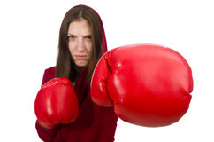 The woman boxer isolated on the white Stock Image