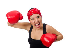 The woman boxer isolated on the white Royalty Free Stock Photo