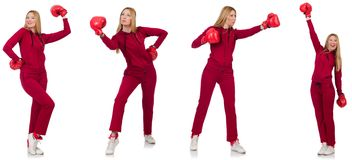 The woman boxer isolated on the white Stock Images