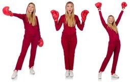 The woman boxer  on the white Stock Photos