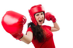 Woman boxer Stock Image